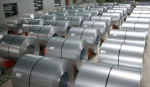 Wholesale steel sheet: Galvanized Steel Sheet Metal Coils