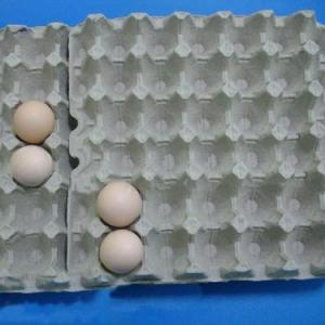 Wholesale Food Packaging: Paper Pulp Egg Tray