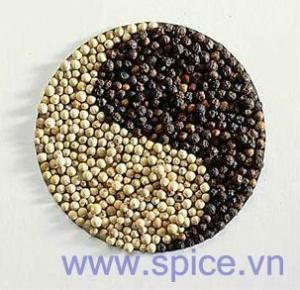 Wholesale viet nam: Vietnam Black Pepper