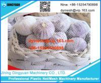 Plastic Packing Net Machine 2
