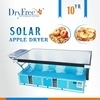 Wholesale solar heating: Heating System Plum Solar Dehydrator with Trays