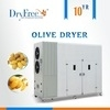 Wholesale fruit quality meter: Hot Air Circulating Olive Drying Oven
