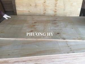 Wholesale packing plywood: Sell Packing Plywood 4x8 12mm 100% Made in Vietnam
