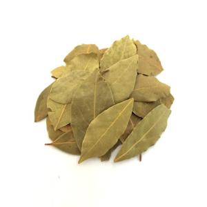 Wholesale bay leaves: High Quality Natural Spices Bay Leaf Myrcia