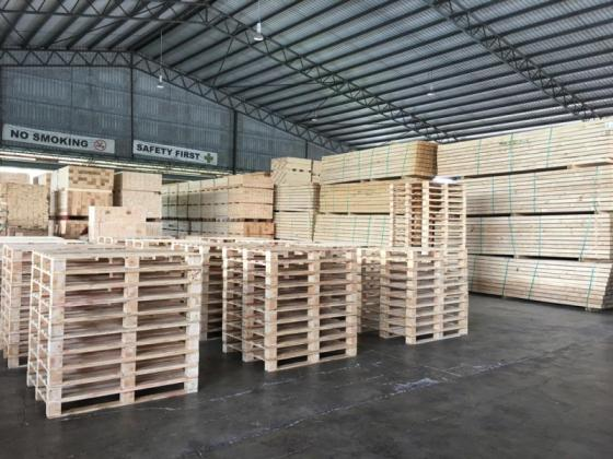 Pinewood To Cut for Pallet