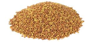 Wholesale Hay: Alfalfa Seeds