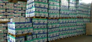 Wholesale color paper: Cheap A4 Paper 70gsm 80gsm Colored Papers with Sinar Dunia Copy Paper A4 80 GSM