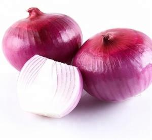 Wholesale red onion: Special Grade Fresh Red Onion Wholesale