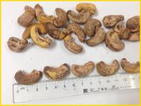 Vietnam Salt Roasted Cashew Nut with Shell or Without Shell Good Quality 2