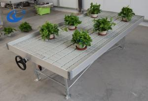 Wholesale potting soil: Greenhouse ABS Plastic Tray Rolling Benches Ebb and Flow Table for Agriculture