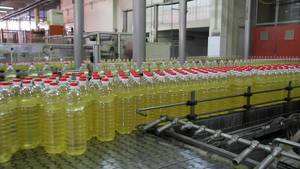 Wholesale nutritional: Best Brand Sunflower Oil Available with High Nutritional Value
