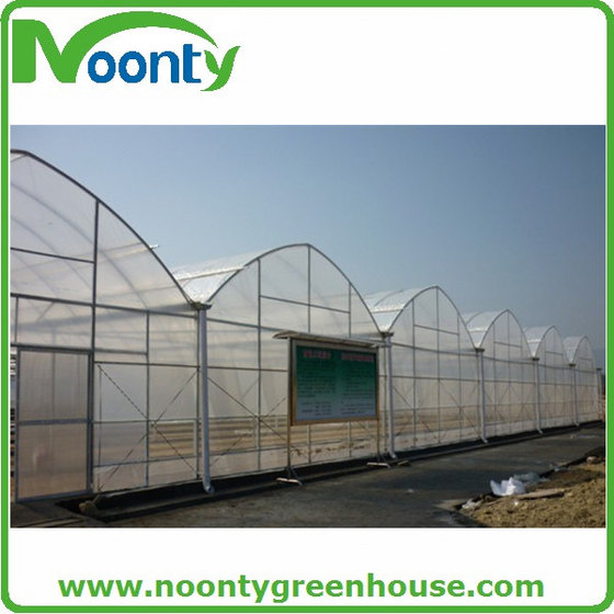 Agriculture Multi-span Film Greenhouses