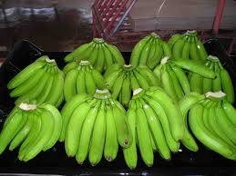 Sell FRESH CAVENDISH BANANA