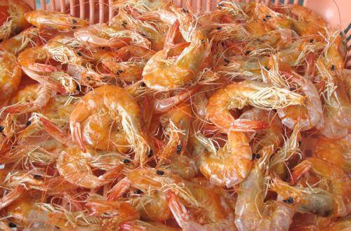 Sell dried shrimps
