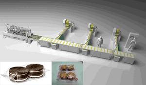 Wholesale enrobing line: Biscuit  Automatic Packing Line