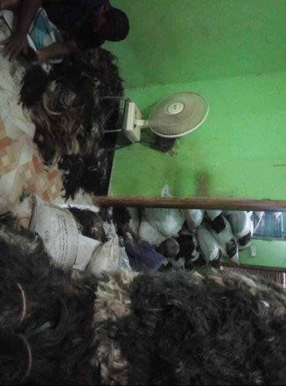 Sell Cow tail hair