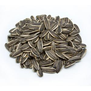 Wholesale sunflower seeds: Best Quality Sunflower Seeds