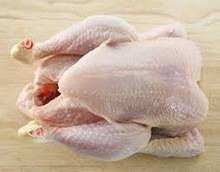 Wholesale halal chicken: Grade A Halal Whole Frozen Chicken From Brazil