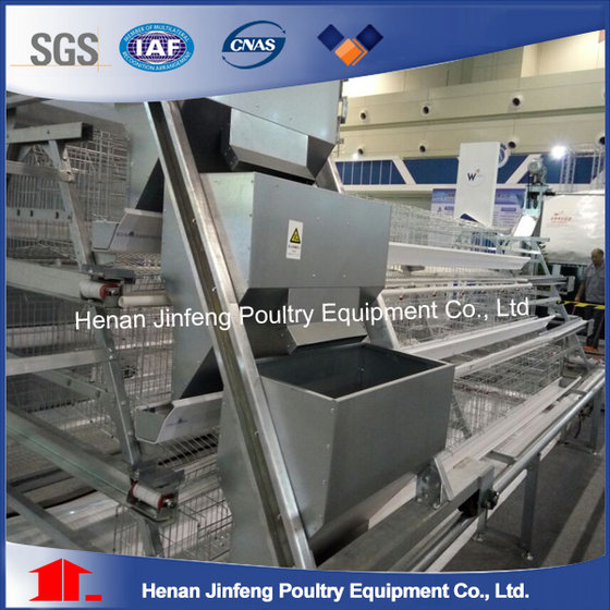 Full Automatic Galvanized Poultry A Type Egg Chicken Laying Hen Cage