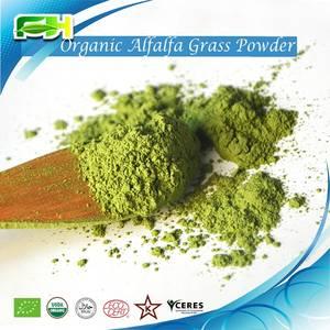 Wholesale alfalfa grass powder: Organic Alfalfa Grass Powder/Juice Powder