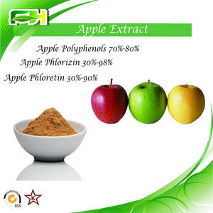 Wholesale apple extract polyphenol: Apple Extract Polyphenols. Phlorizin. Phloretin