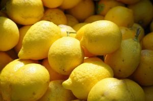 Wholesale citrus: Citrus Fruit Lemon for Sale