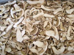 Wholesale boletus: Dried Boletus Edulis