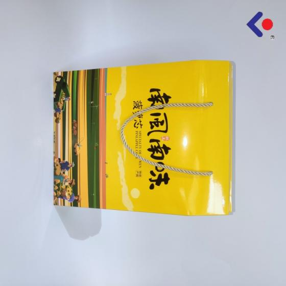 Sell Custom Printing Paper bag Foshan Manufacturer