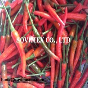 Wholesale pickled vegetables: High Quality Red Chilli with Best Price