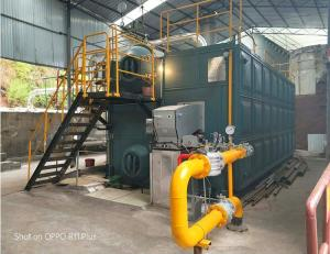Wholesale heated roller press: 20 Ton Steam SZS Series Water Tube Gas/Oil Fired Steam Boiler for Milk Processing Plant