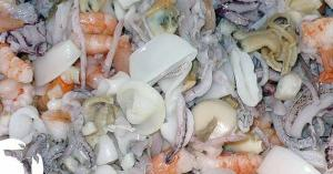 Wholesale Fish & Seafood: Frozen Squid, Shrimp, Sea Cucumber, Whelk Clams, and Cuttlefish