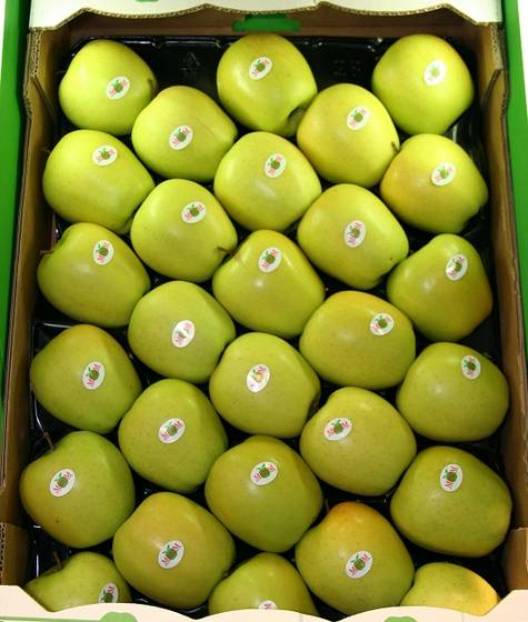 Sell Fresh Golden Delicious Apples