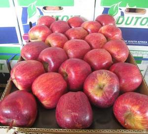 Wholesale Fruit: Fresh Apples