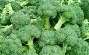 Wholesale vegetable: Green Fresh Vegetables for High Quality Cauliflower
