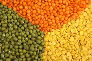 Wholesale red lentil: Whole Pigeon Peas,Split Yellow Peas,Whole Green Mung,Whole Lentils Balls,Masoor  Dal,Chana Dal