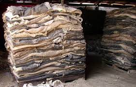 Sell GRADE A DRY AND WET SALTED DONKEY HIDES