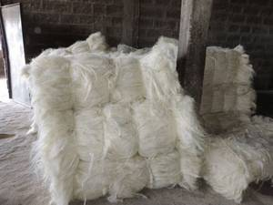 Wholesale Fiber: Natural Sisal Fiber
