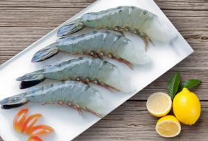 Wholesale fresh fish: Frozen Seafood (Fresh Water Fish, Sea Water Fish, Shrimp, Cephalopods, Clam, Seafood Mix..)
