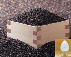 Wholesale fine food: Sesamin