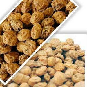 Wholesale Other Nuts & Kernels: TigerNut