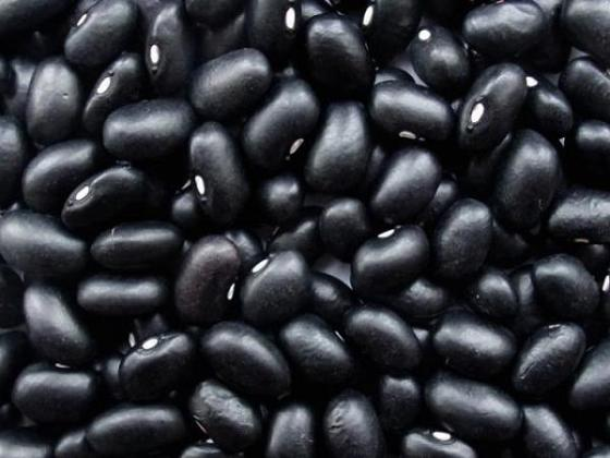 Sell BLACK KIDNEY BEAN