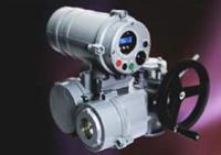 MOV(Multi-turn Actuator)