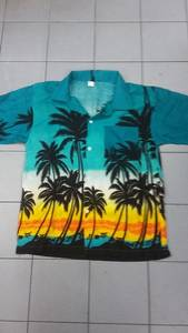 Wholesale Men's Shirts: Hawaiian Shirt