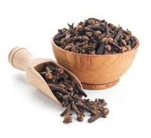 Wholesale single spices & herbs: Grade A Cloves Spices Now Available / Factory Price for Importers