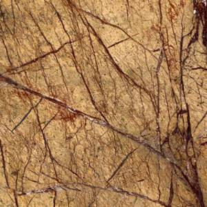 Wholesale granite: Forest Brown