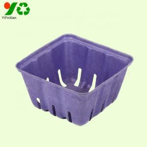 Wholesale dry fruits: Wholesale Dry Fruit Baskets Biodegradable Sugarcane Vegetable Fruit Pulp