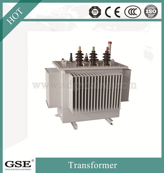 30-2500 Kva Three-phase Fully-sealed Transformer