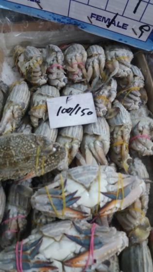 Sell blue crabs available for customers