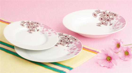 18pcs Round Dinnerware Set for 6