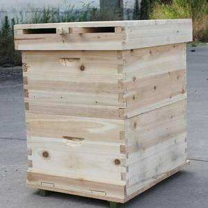 Wholesale pupa: High Quality Wooden Bee Hives/ Beehive